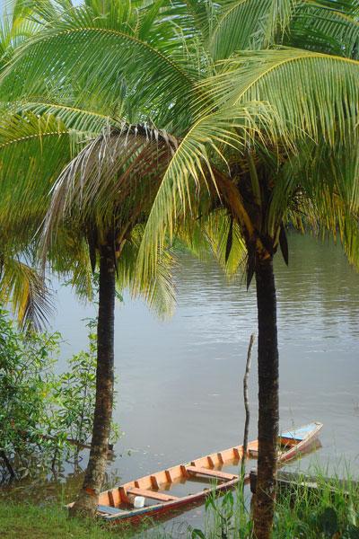 Roura, Guyane